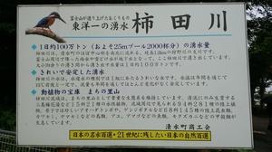 DSC柿田川公園7.jpg