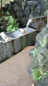 DSC柿田川公園8.jpg