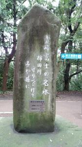 DSC柿田川公園9.jpg