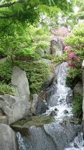 DSC目白庭園5.jpg